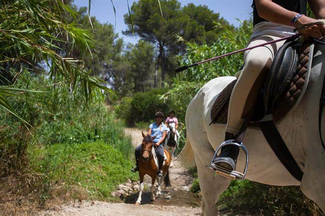 17. Horse riding on the Costa Blanca