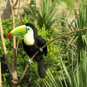3. Terra Natura Zoo Theme Park, Benidorm